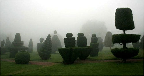 Misty topiary scene at Fingask Castle